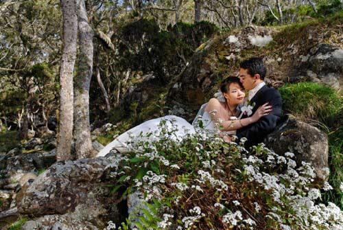 Mariage Réunion en fotêt au Maïdo